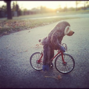 Bike sloth, courtesy of http://www.flickr.com/photos/greatdanestudios/6326094611/