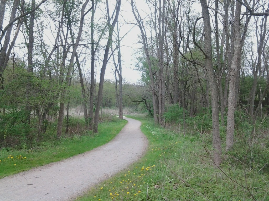 Towpath trail in early May