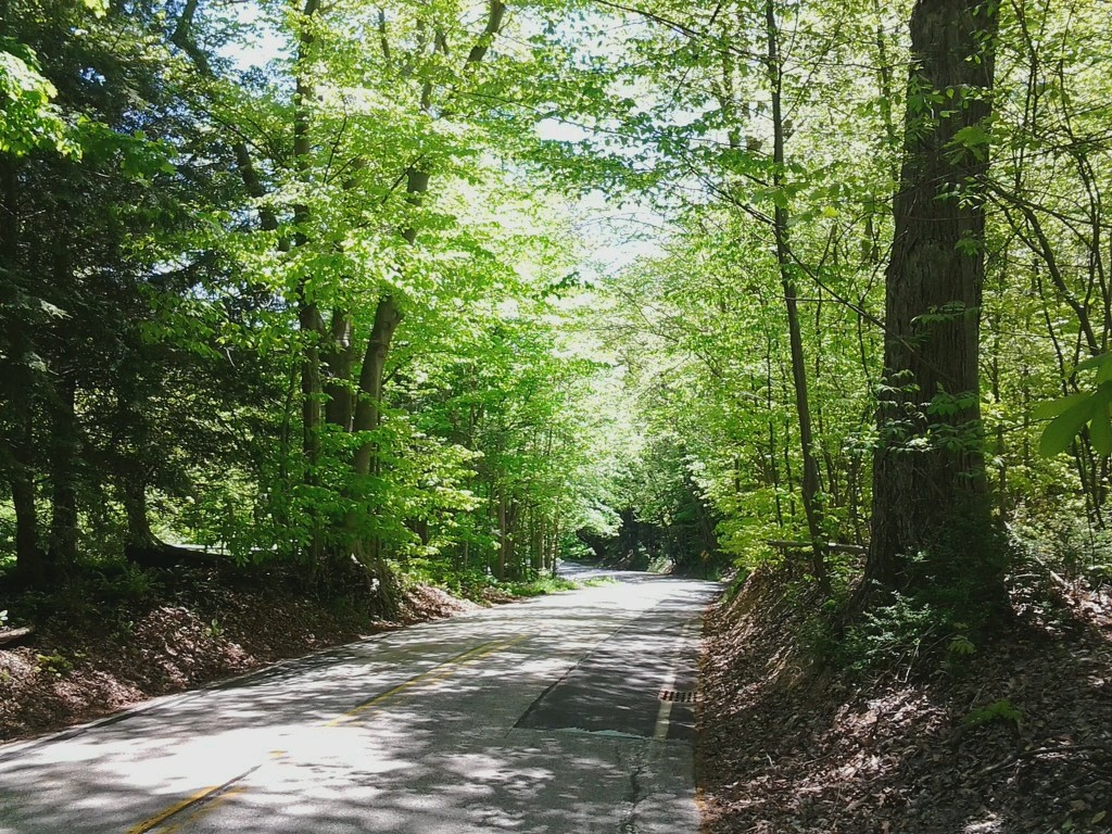 Jackson Road descent to the Chagrin River Valley